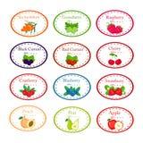 Grote reeks verschillende etiketten voor jam en conservs met tuinvruchten stock illustratie
