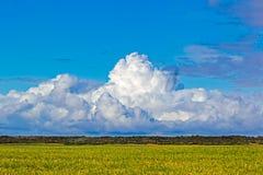 Grote regen gevulde cumulonimbus wolk stock afbeelding