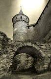 Grote renaissancetoren en een heilige baksteenbrug Royalty-vrije Stock Foto