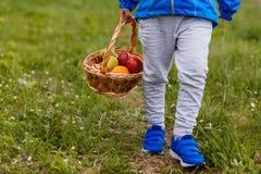 Grote rieten mand met fruit in de handen van een kind stock afbeelding