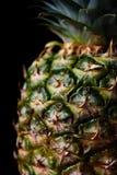 Grote rijpe ananas Stock Afbeelding