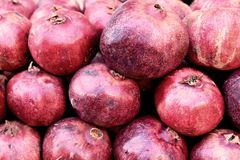 Grote rijpe mooie vruchten granaatappel royalty-vrije stock afbeelding