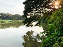 Grote rivier en boomachtergrond royalty-vrije stock afbeeldingen