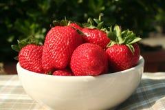 Grote rode aardbeien royalty-vrije stock foto