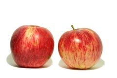 Grote rode appel van tuin 8 Stock Foto