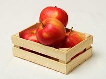 Grote rode appelen in houten doos Royalty-vrije Stock Afbeelding