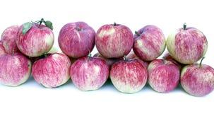 Grote rode geïsoleerde appelen Stock Foto's