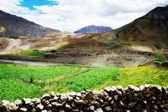 Grote rokerige bergen met de grond royalty-vrije stock foto's