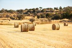 Grote ronde balen van stro, schoven, hooibergen op het gebied in Th Royalty-vrije Stock Foto's