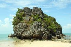 Grote rots die met tropische vegetatie amid overzees wordt behandeld Stock Afbeelding