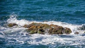 Grote Rots in het blauwe wateroverzees Stock Foto