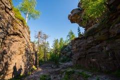 Grote rots met het intresting van vorm Stock Foto's