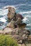 Grote rotsen in de Zwarte Zee Stock Afbeeldingen