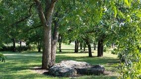 Grote Rotsen onder Bomen stock afbeelding
