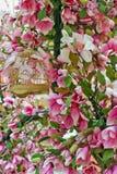 Grote roze de boombloemen en bladeren van de de lente bloeiende magnolia royalty-vrije stock afbeelding