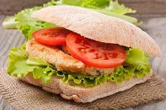 Grote sandwich Royalty-vrije Stock Foto