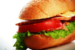 Grote sandwich Royalty-vrije Stock Foto's