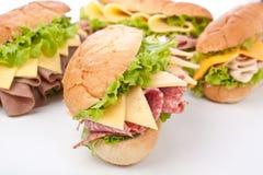 Grote Selectie van Smakelijke Sandwiches Stock Foto