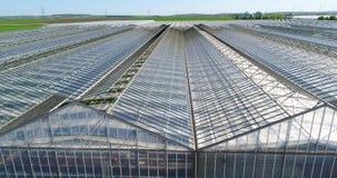 Grote serre met groenten, het groeien groenten, industriële serre, een serre met een intrekbaar dak, a stock video