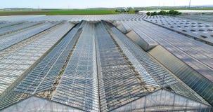 Grote serre met groenten, het groeien groenten, industriële serre, een serre met een intrekbaar dak, a stock videobeelden
