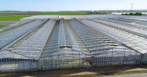 Grote serre met groenten, het groeien groenten, industri?le serre, een serre met een intrekbaar dak, a stock footage