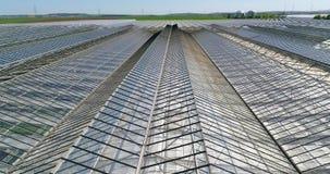 Grote serre met groenten, het groeien groenten, industri?le serre, een serre met een intrekbaar dak, a stock video