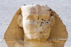 Grote Sfinx royalty-vrije stock foto's