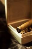 Grote sigaar Royalty-vrije Stock Afbeelding