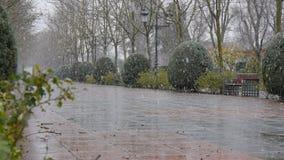 Grote sneeuwvlokken die in het park vallen stock video