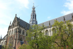 Grote or St. Bavoschurch, Haarlem, the Netherlands Royalty Free Stock Image