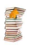 Grote stapel van boeken en geïsoleerdea de herfstblad Royalty-vrije Stock Fotografie