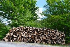 Grote stapel van houten die logboeken langs de weg in een platteland in een zonnige de zomerdag worden gesteld stock afbeeldingen