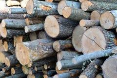 Grote stapel van houten logboeken als brandhout stock foto