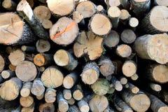 Grote stapel van houten logboeken als brandhout stock fotografie