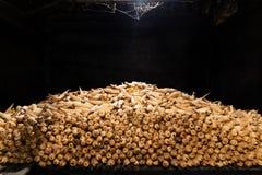 Grote stapel van maïskolven in de zeer donkere zolder van een traditioneel hmonghuis in de Provincie van Ha Giang, Noordelijk Vie stock afbeelding