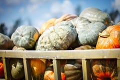 Grote stapel van pompoenen op hooi in een houten kar het seizoen van oogst Gelukkig Thanksgiving day Oogstfestival stock afbeelding
