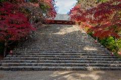 Grote steentreden en mooi de herfstseizoen in tempel Jingo -jingo-ji Stock Foto