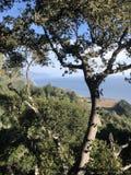Grote Sur Californië Royalty-vrije Stock Foto's