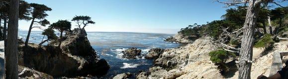Grote Sur Californië - de Eenzame Boom van de Pijnboom Royalty-vrije Stock Fotografie
