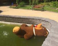 Grote teddybeer - slachtoffer van Stock Afbeelding