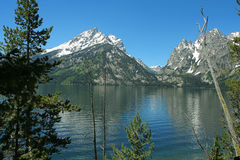 Grote Tetons, Wyoming Stock Foto's