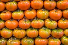 Grote tomaten voor verkoop Stock Afbeelding