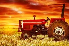 Grote tractor op zonsondergang Stock Fotografie