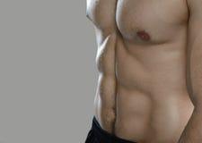 Grote training Portret van spier professionele bodybuilder en Royalty-vrije Stock Afbeelding
