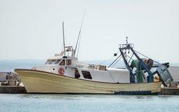 Grote vangst van vissen in knechtschap royalty-vrije stock afbeelding