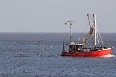Grote vangst van vissen in knechtschap stock afbeelding
