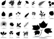 Grote vastgestelde pictogrammen - 1. Bladeren Stock Fotografie