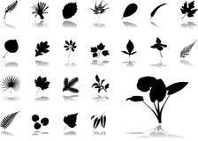 Grote vastgestelde pictogrammen - 17. Bladeren Stock Fotografie