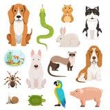 Grote vectorreeks verschillende huisdieren Katten, honden, hamster en andere huisdieren in beeldverhaalstijl Stock Afbeeldingen