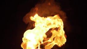 Grote verbazende brandvlammen stock footage